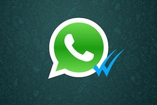 WhatsApp: il trucco per leggere i messaggi evitando le spunte blu su Android e iOS