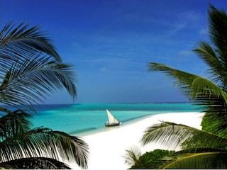 Alle Maldive, tra lagune blu, atolli e barriera corallina