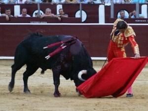 il torero di jerez juan josè padilla mentre combatte con il toro a Pamplona durante San fermin 2010