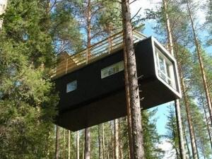 Ecco una delle stanze del singolare Tree Hotel in Svezia