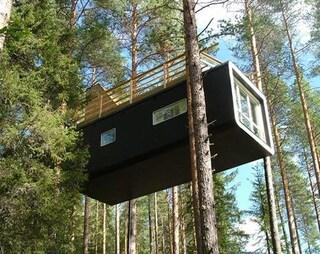 Tree Hotel in Svezia: le strane case sopra la foresta del Nord
