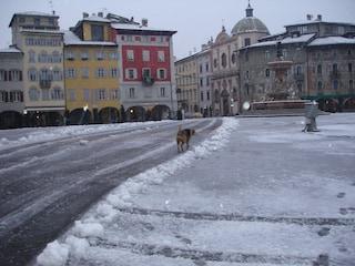 Vacanze di capodanno in Trentino: la neve, le spa, e i mercatini di Natale