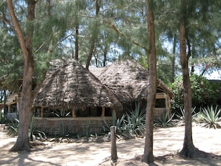 Escursioni a Malindi, Kenya: il Parco Marino, lo snorkeling e la spiaggia d'orata