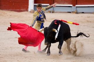 Spagna, Barcellona dice addio alla corrida
