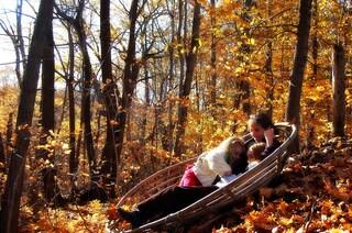 I colori dell'autunno nelle foto dei boschi dal mondo
