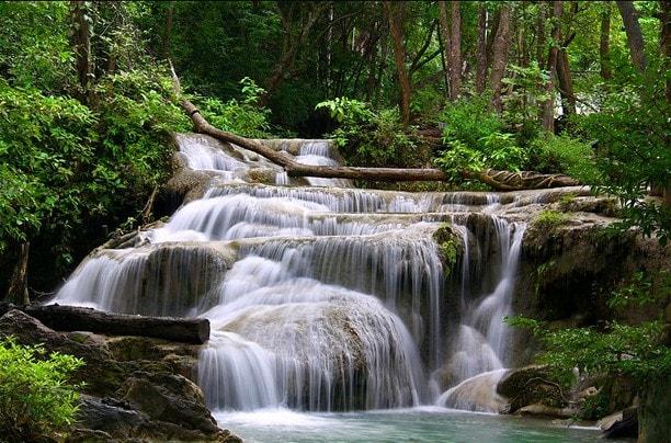 foreste pluviali erawan