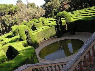 Perdersi nella bellezza dei labirinti botanici