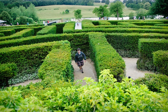 The end is in sight in the Maze at Leeds Castle