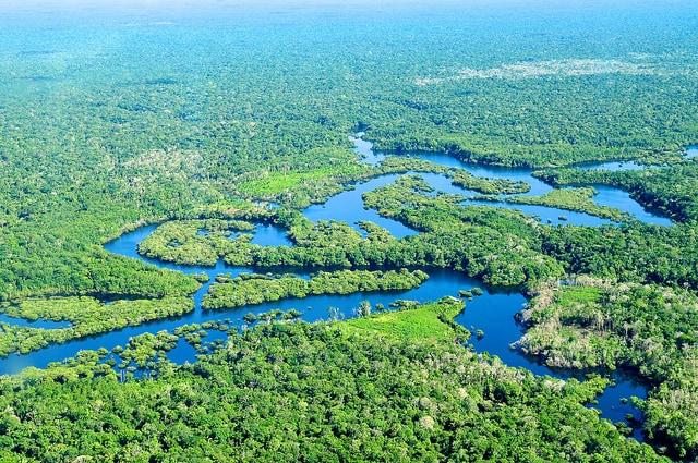 meraviglie foresta amazzonica