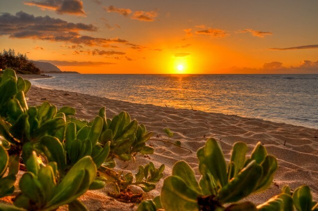 viaggi di nozze hawaii