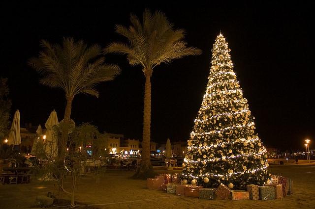 Le Luci Degli Alberi Di Natale Piu Belli Nelle Piazze Delle Citta