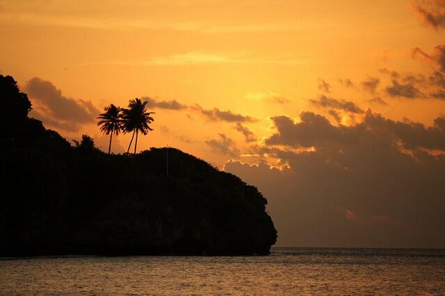 isola di natale habitat