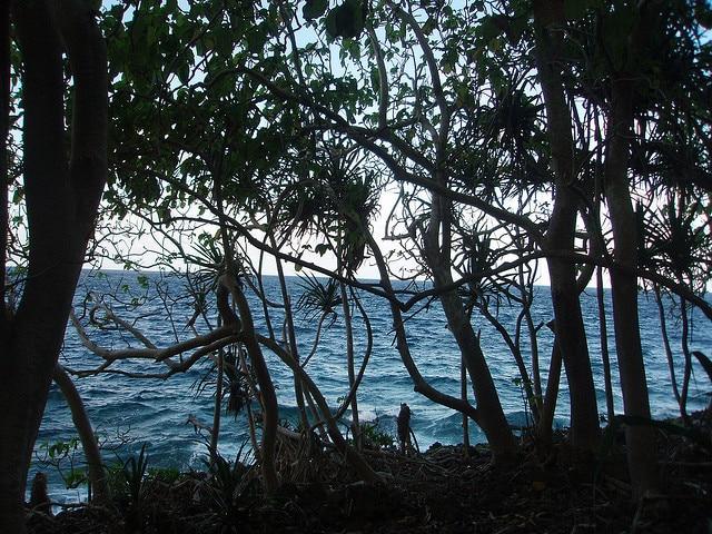 isola di natale tropicale