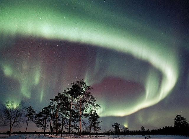 rovaniemi aurora