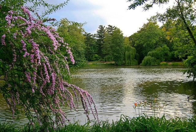 Łazienki Park di Varsavia