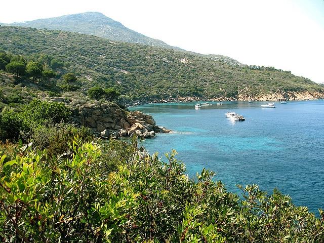 Isola del Giglio, le spiagge