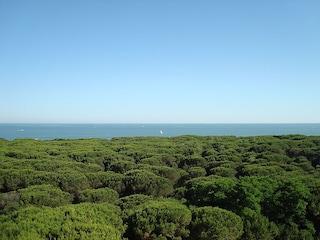Veneto e Friuli, vacanze al mare nelle spiagge più belle e famose