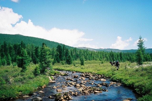 vacanze estive in Siberia
