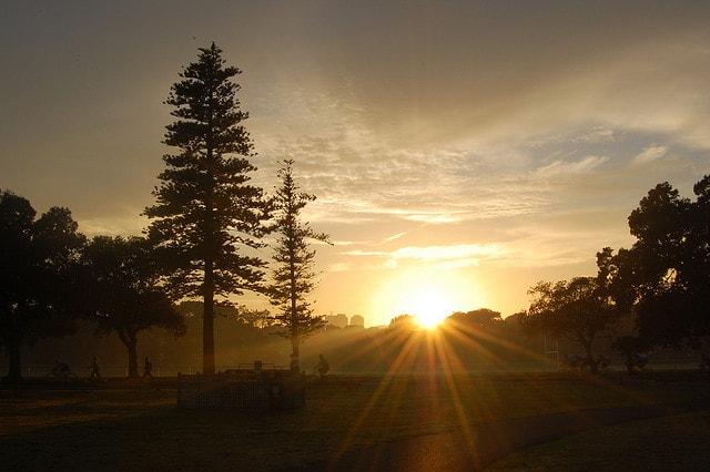 Sydney, Centennial Park