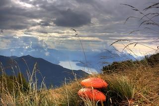Visita al Lago di Como: un angolo di Mediterraneo fra le montagne