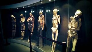 Il Museo delle Mummie di Guanajuato: una collezione inquietante