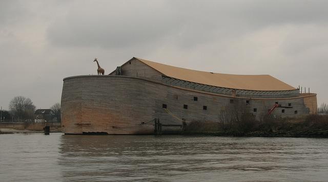 riproduzione arca di noè