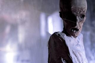 Mummie italiane: viaggio macabro tra cripte e cimiteri degli orrori