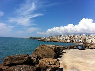 Vacanze a Selinunte tra le rovine della città degli Dei