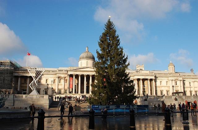 Albero di Natale a Trafalgar Square. Foto di geekgirlnyc