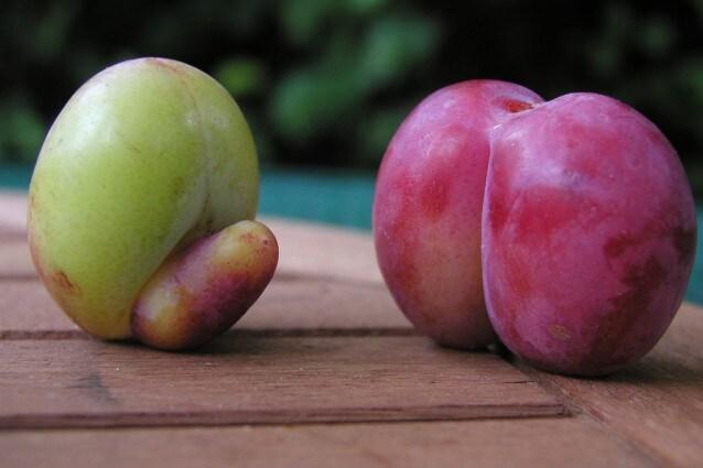 Andiamo... è solo frutta