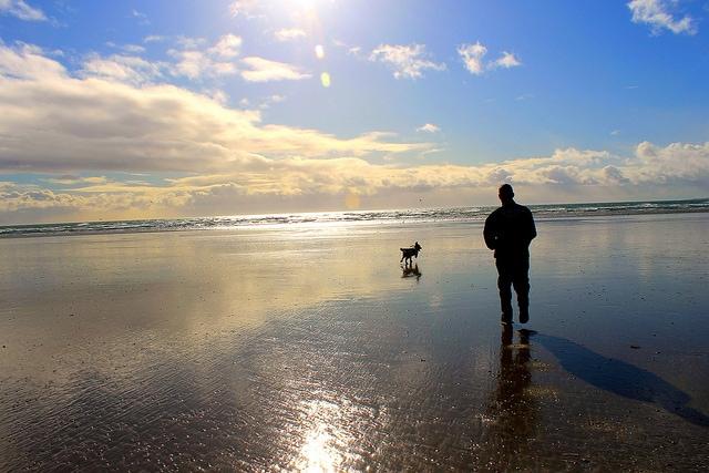In spiaggia col cane