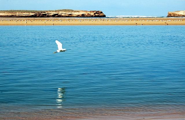 Spiaggia di Oualidia, Marocco. Foto di Laura