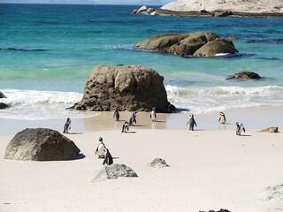 Sudafrica, la bellezza del mondo in un viaggio