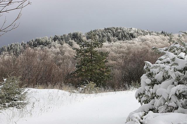 Neve sul Campo Stella