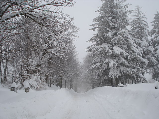Durante l'inverno la neve cade abbondante nell'entroterra ligure ed è perfetta per lo sci