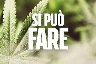 Perché è ora di firmare per il referendum sulla cannabis