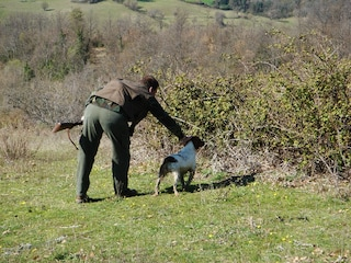 Cerca di salvare il suo cane da caccia finito nel canale, Franco scivola e muore annegato