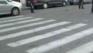 Bimbo di 6 anni travolto da un'auto in strada a Lucca: è grave