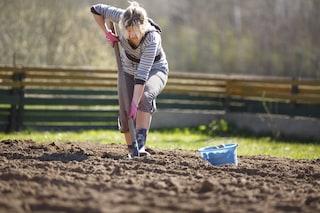 Dl Sostegni bis, nuovo bonus per i lavoratori agricoli 2021: a quanto ammonta e chi ne ha diritto