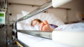 Biella, bimbo di 3 anni si alza sul seggiolone e cade dalla finestra: si sveglia e saluta i genitori