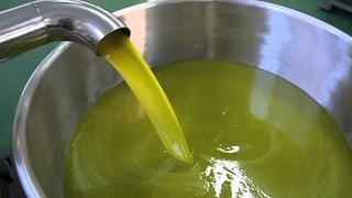 """Foggia, olio di soia spacciato per extravergine: """"Venduto anche a rinomati ristoranti"""""""