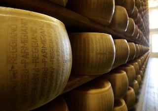 """Il Parmigiano Reggiano deposita il ricorso contro il """"parmesan"""" Kraft: """"Siamo Davide contro Golia"""""""