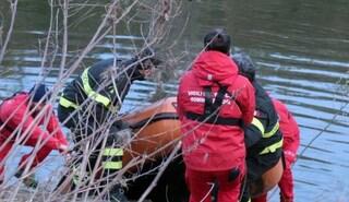Rapallo, bimba cade in un torrente da 5 metri: salvata da un passante