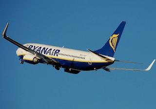 Ryanair, uccello si schianta contro l'areo: paura sul volo Dusseldorf-Bari