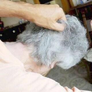 Palermo, nipote prendi a schiaffi il nonno e lo fa sbattere contro un muro: l'anziano è gravissimo