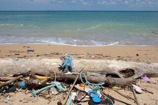 Toscana, 60 tonnellate di plastica in fondo al mare da 5 anni: tutti sanno ma nessuno le rimuove