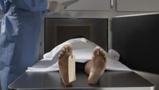 Corpi lasciati a imputridire e divorare dai topi, bufera su centro studi all'Università di Parigi