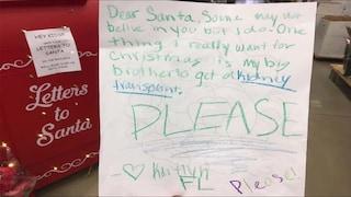 """""""Caro Babbo Natale, vorrei un rene per il mio fratellino"""": la letterina di Kaitlyn è virale"""