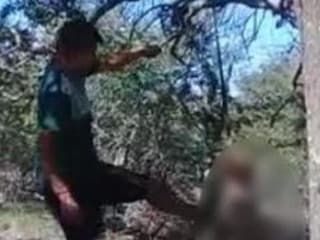 """Argentina, appende il cane a un albero e lo uccide con calci e pugni: """"Non mi faceva dormire"""""""