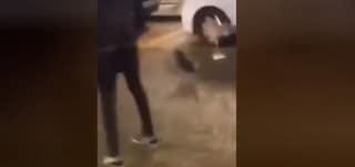 Calci e torture alla gallina in strada per la festa di 18 anni, video choc